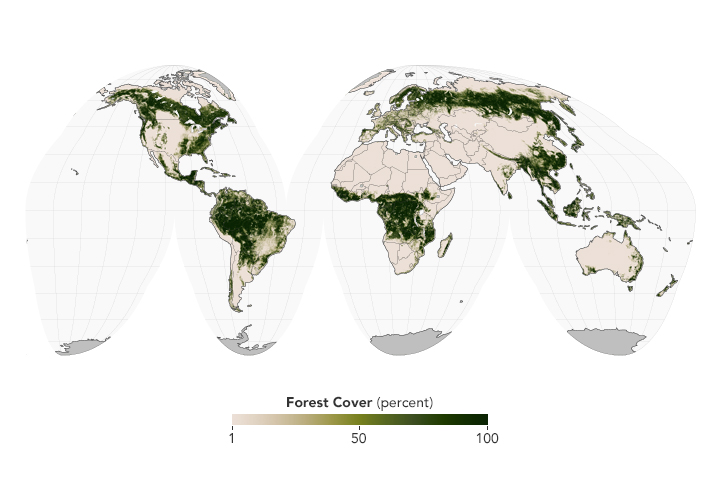 Datei:Globaltreecover10pct 2000 2009.jpg