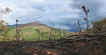 Deforestation tropen klimawandel for Definition von boden