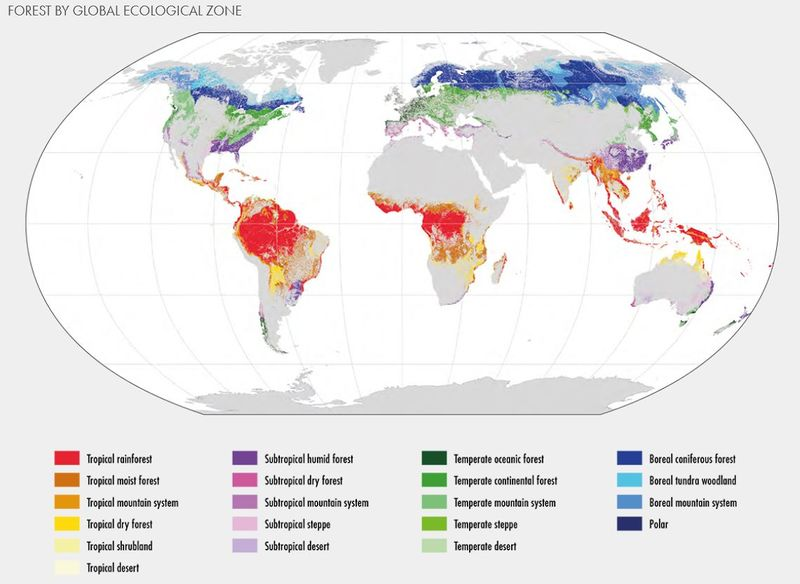 Datei:Global forests ecological zones.jpg