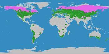 Gemäßigte Zone – Klimawandel