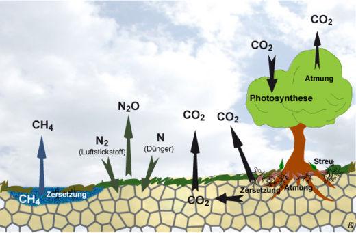 Boden Im Klimasystem Klimawandel